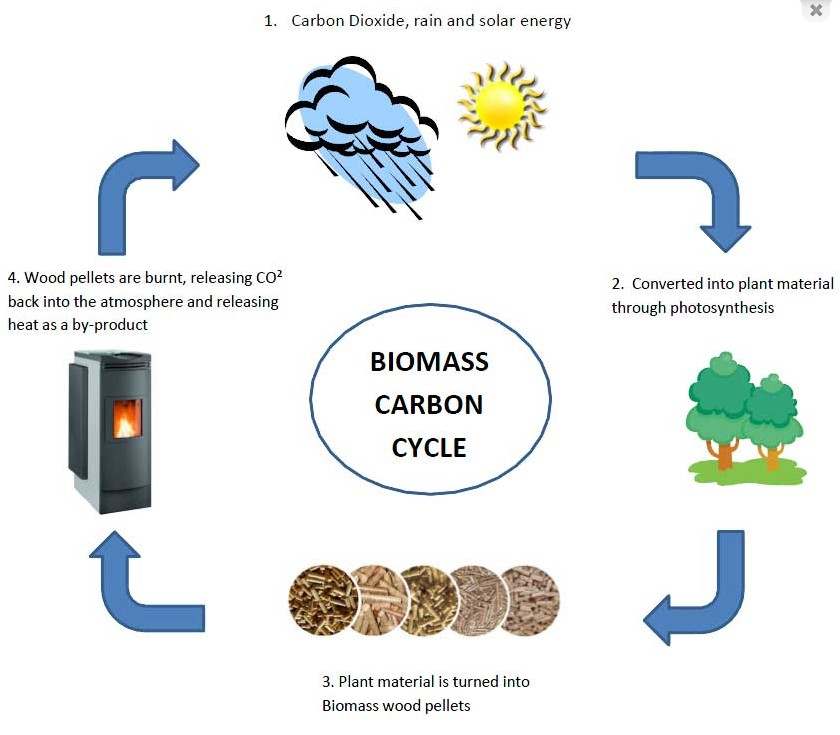 Biomass Boilers - Biomass Carbon Cycle